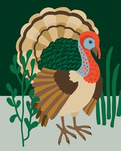 Dindon sauvage Lisa, Illustration, Rooster, Animals, Wild Turkey, Animaux, Illustrations, Animal, Animales