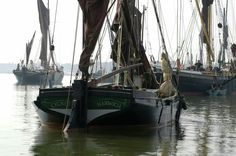 Cygnet Old Sailing Ships, Kingdom Of Great Britain, Sail Boats, Republic Of Ireland, Tall Ships, Northern Ireland, Boating, East Coast, Great Places