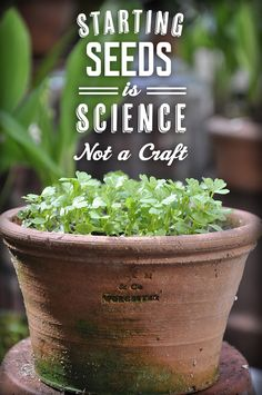 Growing with Plants: 10 tips for starting seeds. Starting seeds is a science, not a craft.