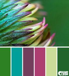 Color Palette, green, emerald green, pistachio green, magenta, purple.