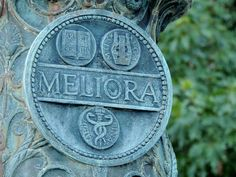 "University of Rochester motto: Meliora ""Ever Better"" University Of Rochester, Rochester New York, How To Clean Crystals, Life Map, Thousand Islands, Finger Lakes, Physicist, Stay Strong, Motto"