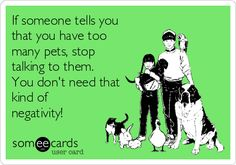 if-someone-tells-you-that-you-have-too-many-pets-stop-talking-to-them-you-dont-need-that-kind-of-negativity-8042e.png 420×294 pixels