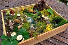 Bac sensoriel la forêt La rivière est creusée dans la terre, film plastique+ cailloux + eau + colorant.
