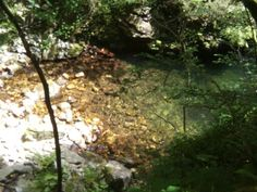 Playucas del Rio Alba