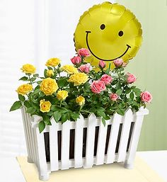 A smiley face balloon amidst a lovely pink and yellow #rose #garden surrounded by a white picket fence.#picketffences #flowers