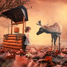 Awesomely Amazing Photo Manipulations by Caras Lonut