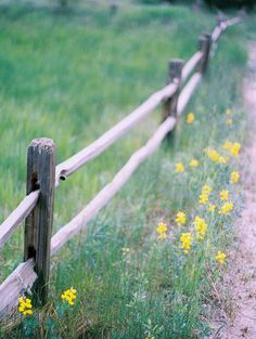 rustic fence along side the road ...