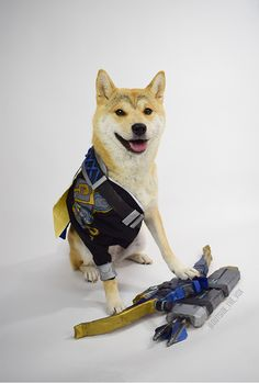 Hanzo Doge by @Outside_the_Vox