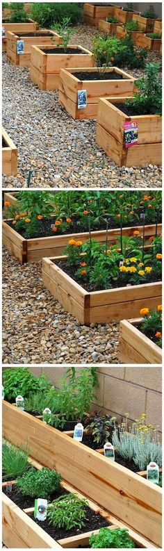 Mini-raised bed