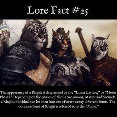 "Might do a lore spam today, so activate Post Notifications to ""ON"" for my page! #skyrim #dragon #dragons #fact #gaming #videogames #gamer #elves #fantasy #elderscrolls #bethesda #theelderscrolls #lorefact #oblivion #morrowind #es #eso #elderscrollsonline #theelderscrollsv #dwemer #dwarves #giants #khajiit #elderscrollslorepage"