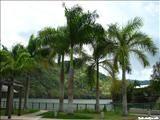 Lago Dos Bocas - ZeePuertoRico.com