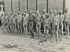 El campo albergó a 200.000 prisioneros, de los que la mitad murieron en Mauthausen, Austria