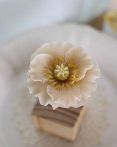 양귀비 #대구플라워케이크 #대구꽃배움반 #대구앙금플라워 #대구앙금꽃배움반 #대구앙금플라워떡케이크 #플라워케이크 #flower #flowers #flowercake #작약 #beanflower #atelierryeo #떡케이크 #대구플라워케익 #캐논100d #캐논사진 #홍화 #앙금플라워떡케이크 #양귀비 #앙금레이스 #フラワーケーキ #花蛋糕 #대구앙금오브제 #naturalpowder #앙금도일리레이스 #2단케이크 #koreacake #koreaflowercake #와라타 #앙금오브제