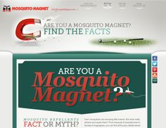 Mosquito facts: What mosquitos are attracted to