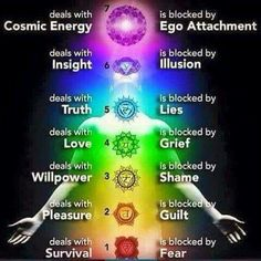 What The Chakras Deal In