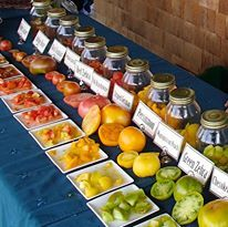 Have you picked up your tickets yet? Dont miss the Heirloom Tomato Tasting happening August 24th! YUM! https://www.facebook.com/cedarcirclefarm