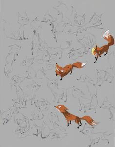and some fox sketches and drawings for my...