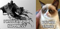 Dementor vs. Angry Cat