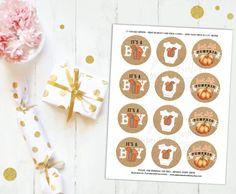 Little Pumpkin Baby Shower Autumn Baby Shower Cupcake