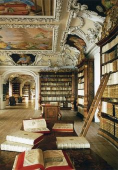 OMG I would be in my glory over this type of library...so many wonderful details. WOW WOW!