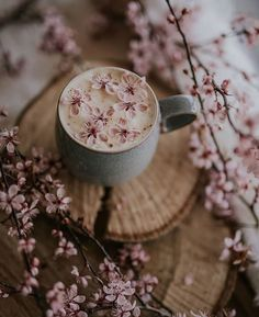 Find beauty everywhere: Photo Et Wallpaper, Spring Wallpaper, Flower Wallpaper, Wallpaper Backgrounds, Iphone Wallpaper, Wallpaper Wedding, Cozy Aesthetic, Aesthetic Coffee, Spring Aesthetic
