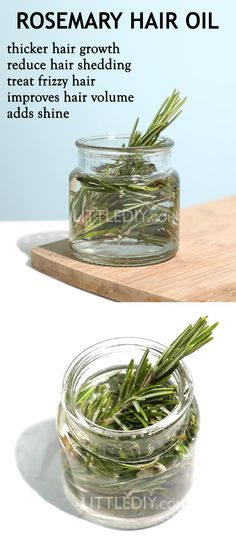 ROSEMARY OIL for faster hair growth - LITTLE DIY Rosemary is quite known for its hair and skin beauty benefits and is also found in tons of skin and hair care products. If you are suffering from hair fall or hair shedding, incorporate rosemary rosem Rosemary For Hair Growth, Rosemary Oil For Hair, How To Dry Rosemary, Natural Hair Growth, Natural Hair Styles, Best Hair Care Products, Beauty Products, Hair Shedding, Skin Products