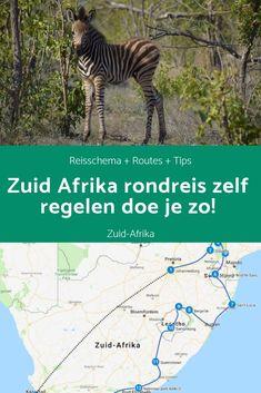 Wil je een mooie rondreis maken voor Zuid-Afrika en denk je erover om deze rondreis zelf te regelen? Dat is een goede gedachte! Zelf ben ik ook op vakantie geweest in Zuid-Afrika en ik heb alles zelf geregeld. Je hebt wat mij betreft zeker geen reisagent nodig om je rondreis te regelen. Ik geef je graag mijn tips om het zelf te regelen en een reisschema te maken. #southafrika #zuidafrika #reistips #reisblog #blogafrika #afrikablog #travelblog #traveltips #highlights #hoogtepunten #rondreis Sa Tourism, Maputo, Pretoria, Africa Travel, Countries Of The World, South Africa, Travel Destinations, Saint Lucia, Around The Worlds