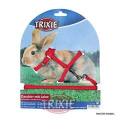 Complementos para animales - Arnés conejo - Complementos para animales