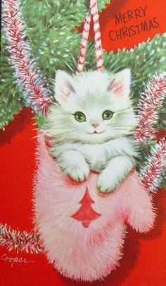 Vintage kitten Christmas Card                                                                                                                                                     More