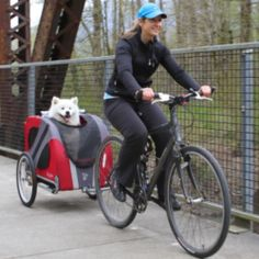 Bringing your children or pets along with you for a bicycle ride, or to use your bike for shopping instead of taking your car, is a great thing,...