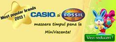 Casio si Fossil: Cele mai vandute branduri in 2013 Fossil, Cereal, Fossils, Breakfast Cereal, Corn Flakes