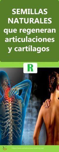 #Semillas para regenerar #tendones, #cartílagos y #articulaciones de forma #natural