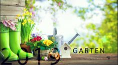 Innovation, Watering Can, Table Decorations, Home Decor, Round Round, Tips, Lawn And Garden, Decoration Home, Room Decor