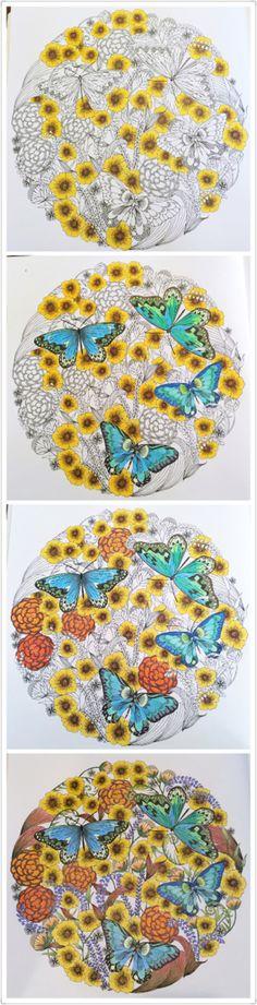 Animal kingdom coloring book
