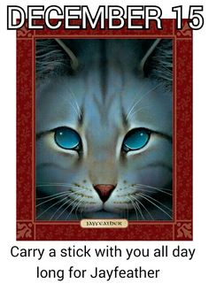 Carry a stick with you all day long on #December_15 for #Jayfeather.