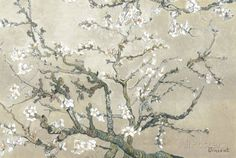 Almond Branches in Bloom, San Remy, c.1890 (tan) Prints by Vincent van Gogh at AllPosters.com