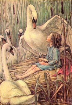 "A repin of art by Cecily Mary Barker, her illustration from ""Lord of the Rushie River"" of a girl and five swans #girl #swans #Barker"