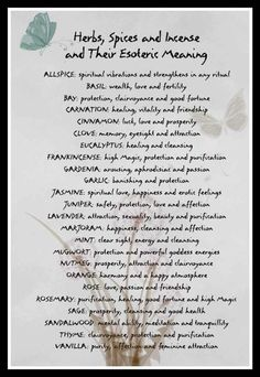 Herbs, Spices & Incense and Their Esoteric Meaning   Witches Of The Craft®
