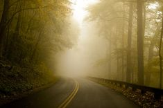 Autumn Mist Blue Ridge Parkway by Terry DeLuco