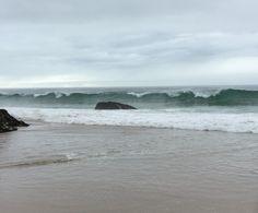 When you love the ocean...