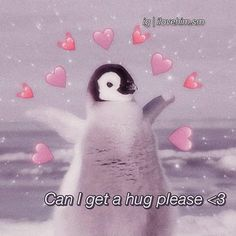 pls give ur local college kid a hug bc we all probs lowkey dying 😭 . creds: to owner penguin babypenguin black white cute adorable flapping hugs hearts love support positivity wholesome meme wholesomememe wholesomeness Cute Cat Memes, Cute Love Memes, Funny Memes, Love Memes For Him, Crush Memes, Animal Jokes, Funny Animals, Heart Meme, I Luv U