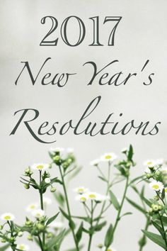 My 2017 New Years Resolutions and my plan to accomplish my goals! See also my post on how to create resolutions that you can achieve. More at anthropolojay.com