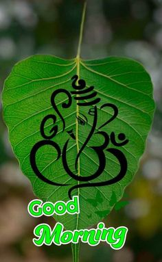 Good Morning Coffee, Good Morning Gif, Good Life Quotes, Life Is Good, Sai Baba Hd Wallpaper, Lord Murugan Wallpapers, Morning Wishes Quotes, Good Morning Beautiful Images, Cute Cartoon Pictures