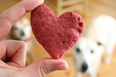 Valentine Dog Treats * 1/4 cup canola oil * 1 cup applesauce * 1/3 cup beet puree or fresh beet juice * 1 and 1/2 cups whole-wheat flour * 2 teaspoons baking powder Cooking Instructions