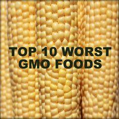 Top 10 Worst GMO Foods, Corn, Soy, Sugar, Canola, Aspartame, Cotton, Dairy, Papaya, Yellow Squash, Zucchini.