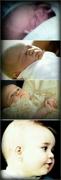♥♥♥ Prince George ♥♥♥