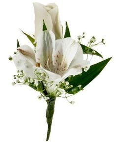 Image result for buttonhole alstroemeria blue