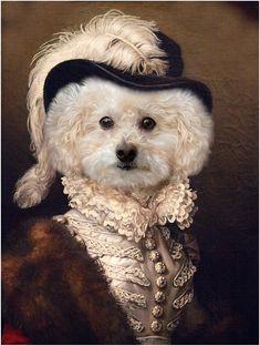 Animal Dress Up, Animal Portraits, Jolie Photo, Dog Dresses, Cat Collars, Pretty Art, Pet Clothes, Banksy, Ink Art