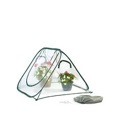 FlowerHouse SeedHouse Clear 4' x 4' x 3' Pop-Up Greenhouse - 7347491 | HSN