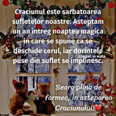 Merry Christmas, Funny, Happy, Holiday, Beautiful, Smileys, Magic, Bra, Fine Dining